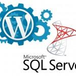 Can WordPress Run on Windows and MSSQL?
